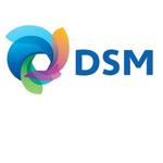 DSM aandeel