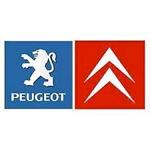 Peugeot Citroën aandeel
